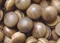 walnut_mushroom_plug.jpg