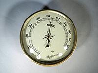 Gold Bezel Ivory Face Hygrometer