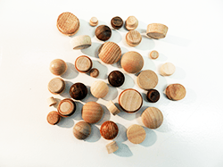 Buy mushroom plugs and wood floor plugs | Bear Woods Supply