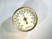 Gold bezel ivory thermometer